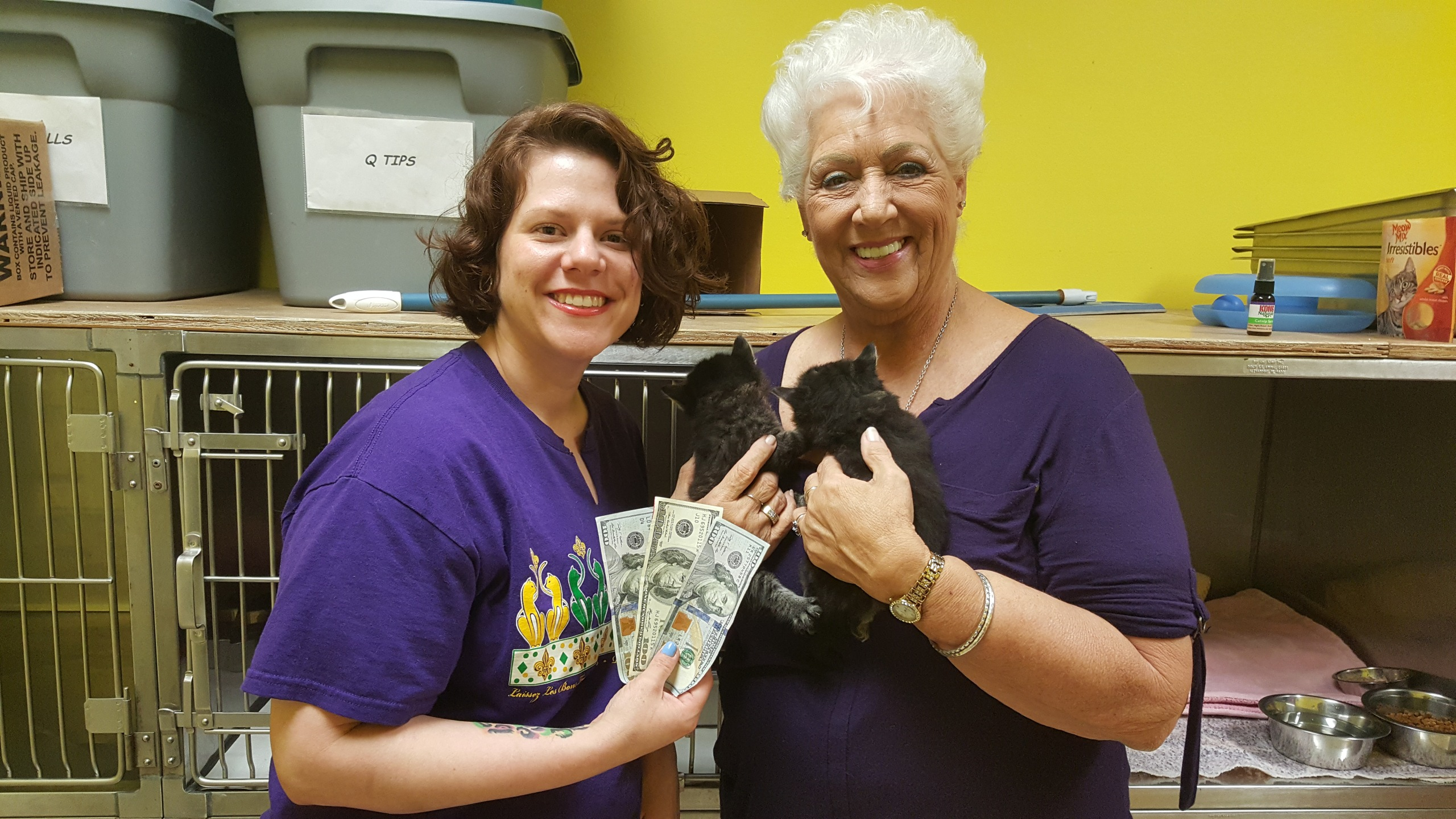 PIF KITTEN MITTENS CATS PAY IT FORWARD