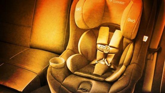 hot car death3_1490299655575.JPG