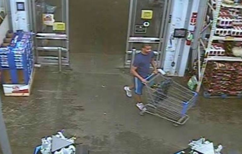 WalMart shoplifter caught on camera stealing security cameras
