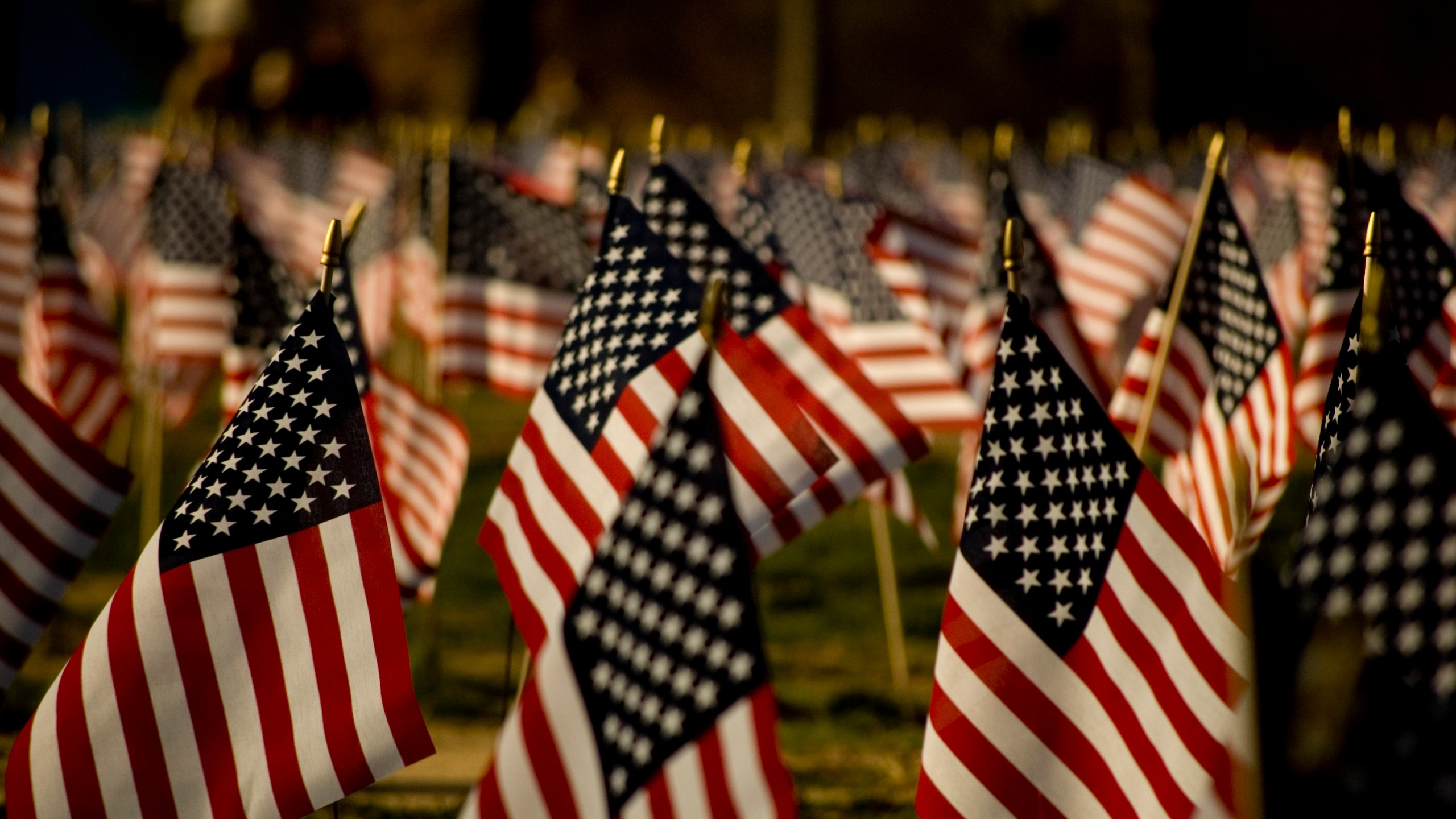 american flags1_1506534892993.jpg