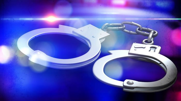arrest3_1533838687486.JPG