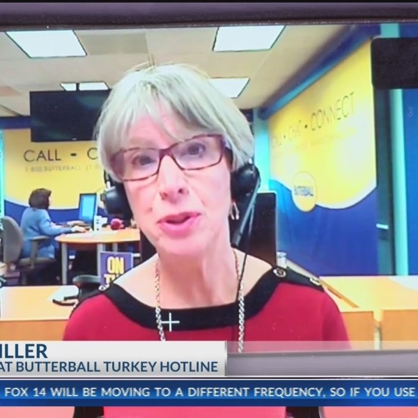 Turkey_Tips_with_Butterball_Brand_0_20181120152435