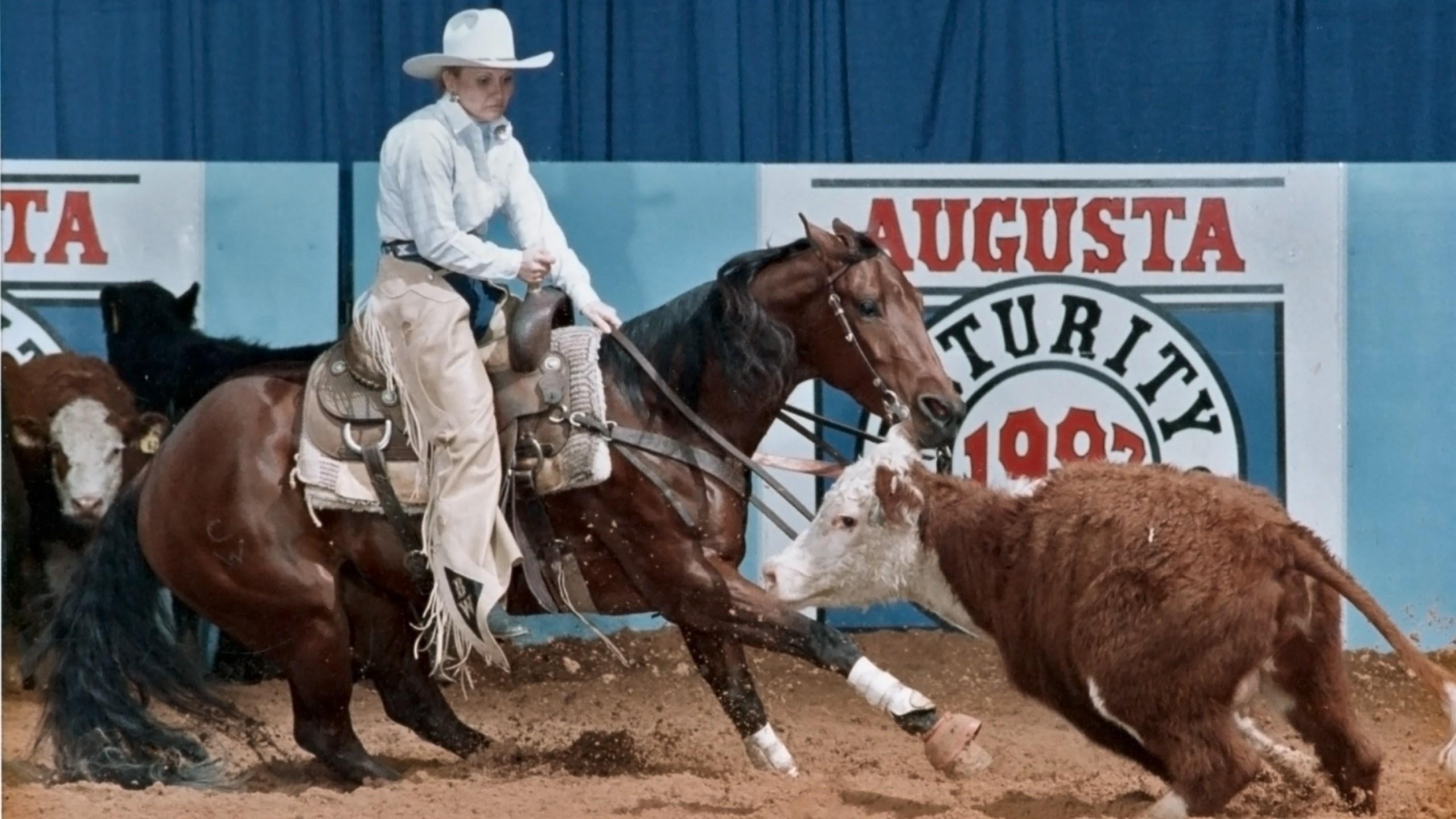 horse cutting_1548636290448.jpg.jpg