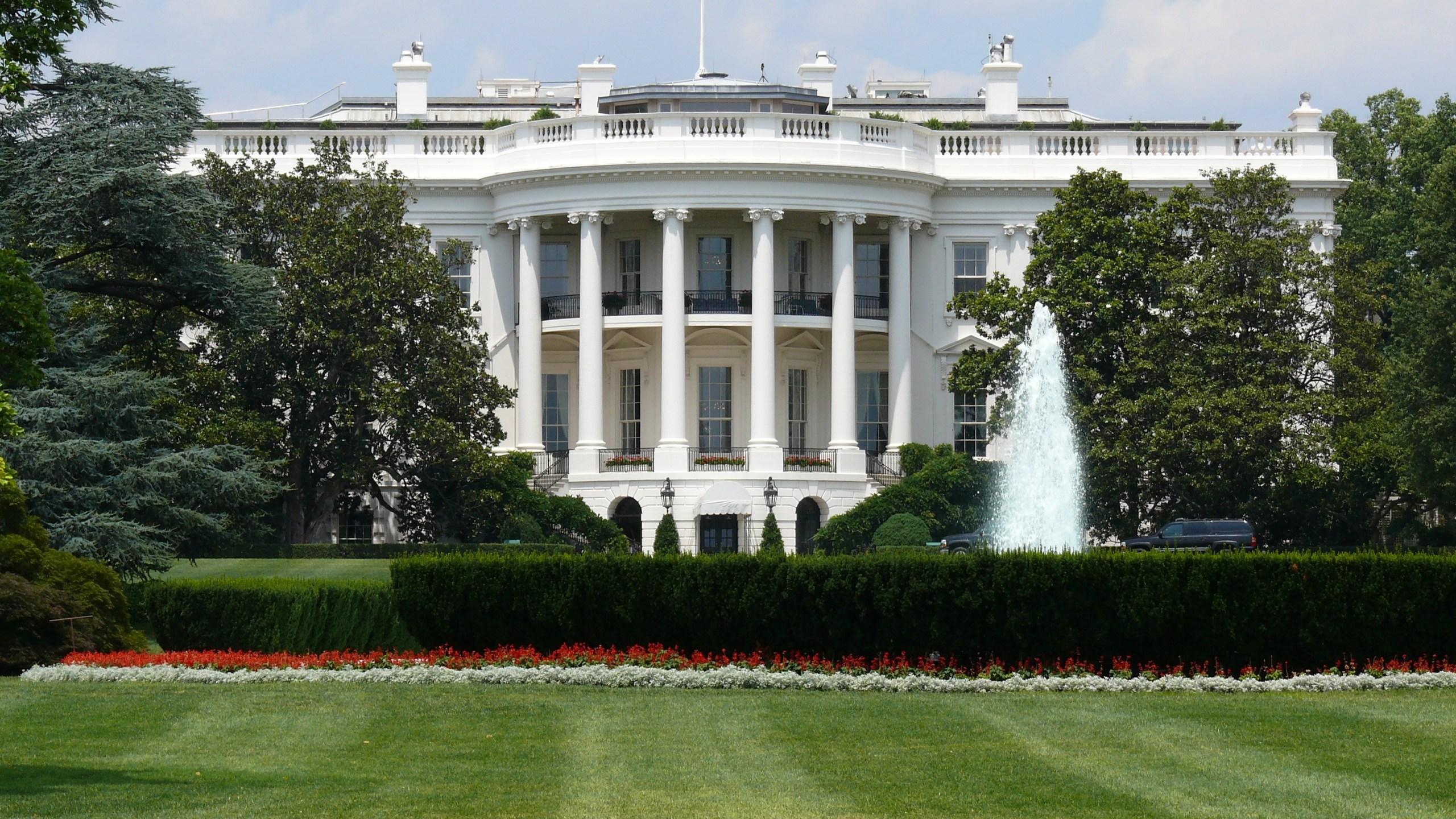 white house rep_1547710411779.jpg.jpg