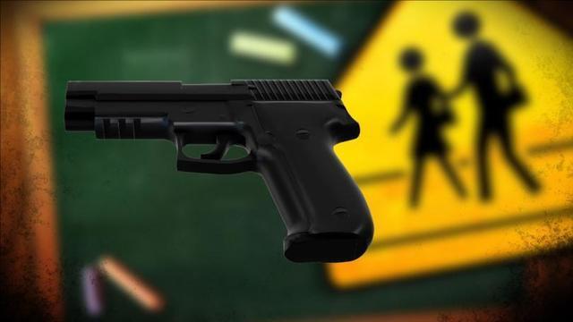 firearm_1554966772830.jpg